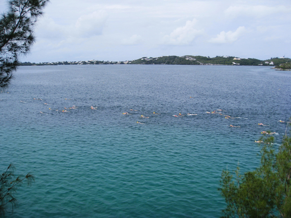 Swimmers in Harrington Sound during the 2011 Bermuda Round-the-Sound Swimathon