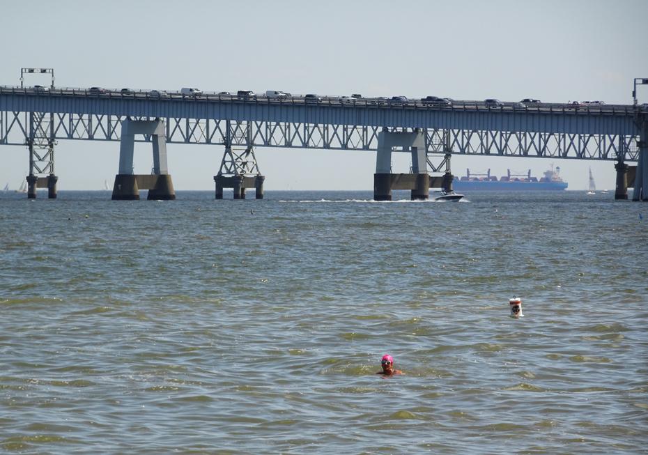 Kathleen Bober, 2017 Great Chesapeake Bay Swim