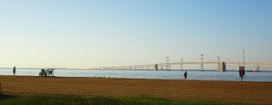 Kathleen Bober, 2017 Great Chesapeake Bay 4.4 Mile Swim
